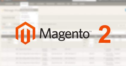Join the CamelWeb team as a Magento 2 developer.